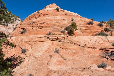 comparable: This huge rock formation at Zion Canyon has erosion markings comparable to whipped cream or soft served ice cream.