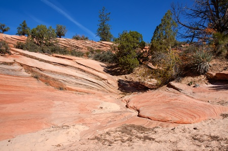 This image from Zion Canyon National Park  appears to show rock running down the slope and pooling at the bottom. photo