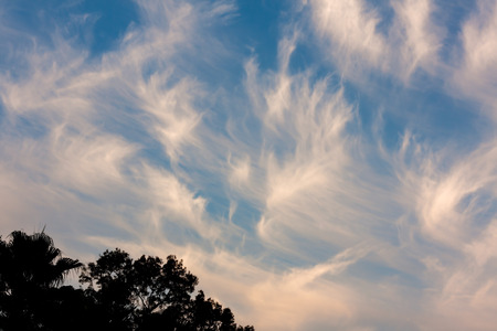 This is an image of cirrus clouds moving over Tampa, Florida  Cirrus clouds are wispy, feathery strands of ice crystals  These clouds are also known as mare photo