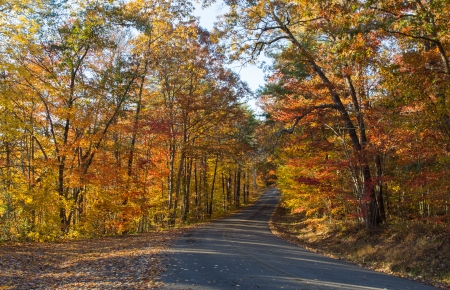 alabama state: This image was taken on a late afternoon Fall day on the Little River Canyon Parkway, Alabama