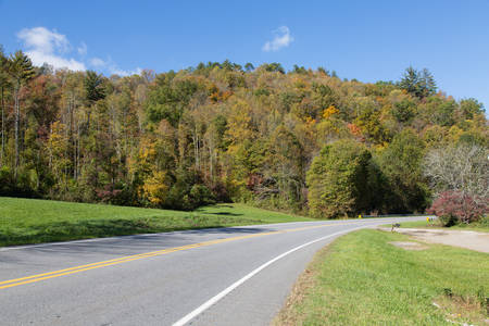 skyway: Trees along the Cherohala Skyway in North Carolina are showing the Fall colors.6