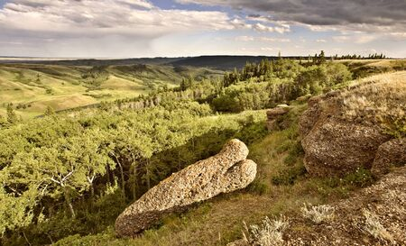 hiils: Cypress Hiils Canada conglomerate cliffs Saskatchewan view Stock Photo