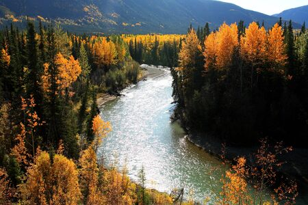 Autumn colors along Northern British Columbia river
