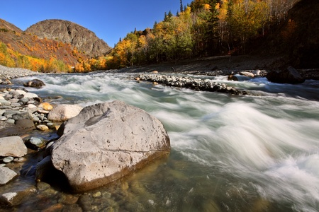 Tahltan River in Northern British Columbia 免版税图像