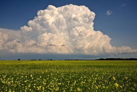 Nubes de tormenta sobre Saskatchewan Foto de archivo - 8393020