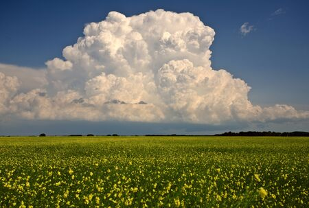 thunderhead: Storm clouds over Saskatchewan Stock Photo