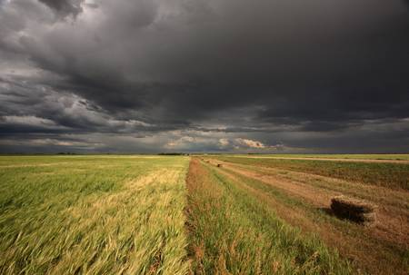 Storm clouds over Saskatchewan Stock Photo - 8393025