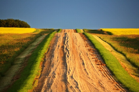 Beautiful colors along a Saskatchewan country road Stock Photo