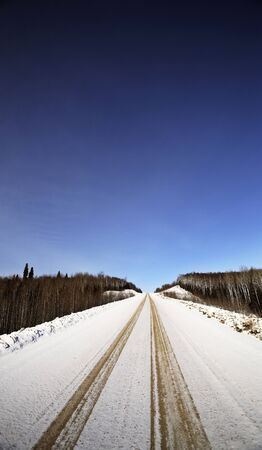 logging: logging road in winter