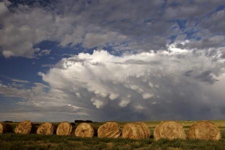 Storm clouds behind hay bales Stock Photo - 8461315