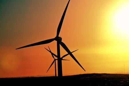 windfarm: Brillo de sol sobre el parque e�lico de Alberta