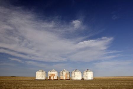 Five granaries in the middle of a field photo
