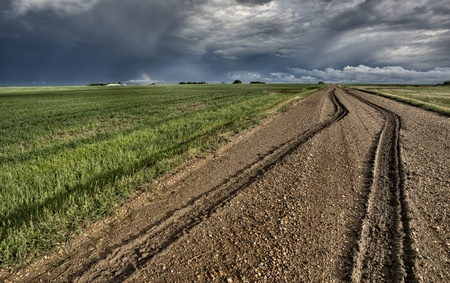 Mud Tire Tracks after a storm in the Canadian Prairies photo