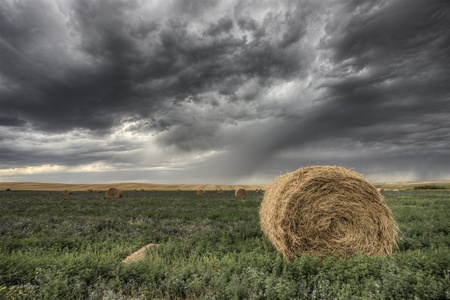 Hay Bale and Prairie Storm Alfalfa field Stock Photo