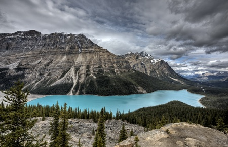 Peyto Lake Alberta Canada emerald green color Stock Photo - 11681827