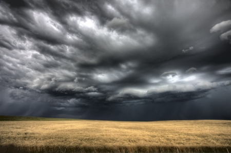 ominous: Storm Clouds Saskatchewan ominous wheat fields Saskatchewan
