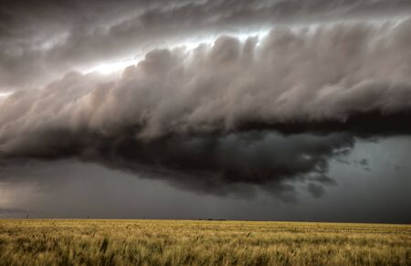 Storm Clouds Saskatchewan over planted wheat fields Stock Photo - 16227061