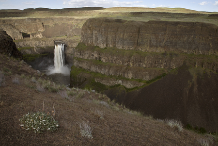 palouse: Palouse Waterfall Washington state Park in Spring