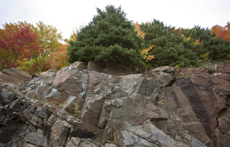 algonquin park: Algonquin Park Muskoka Ontario fall autumn colors Stock Photo