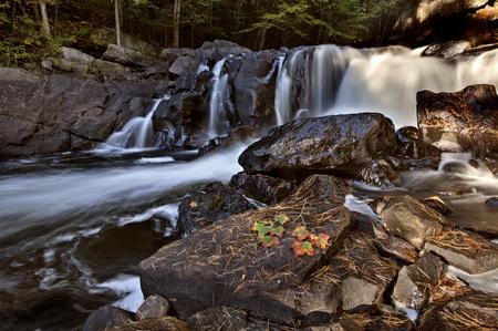 ontario: Algonquin Park Muskoka Ontario fall autumn colors Stock Photo