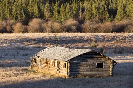 homestead: Cypress Hills Alberta Saskatchewan homestead abandoned building