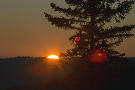 cypress: Cypress Hills Sunset Elkwater Alberta Horeshoe Canyon