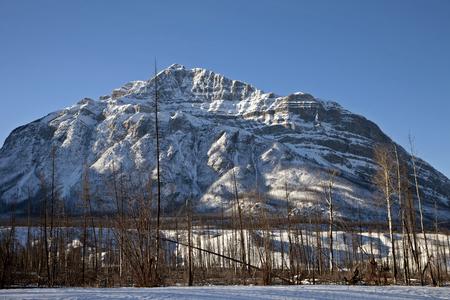 Montañas Rocosas en invierno Canadá Icefields Parkway Foto de archivo