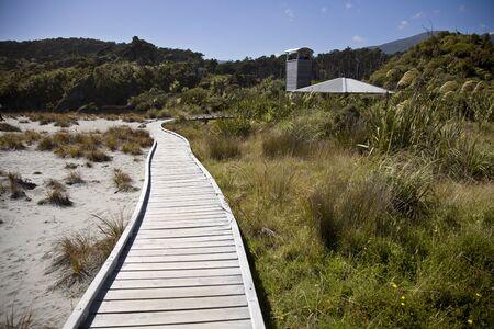 Passerella di legno Nuova Zelanda Isola del Sud Isola del Sud Archivio Fotografico - 77824092
