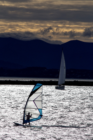 Sailboard wind surfer Nelson New Zealand windy day