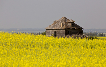 Abandoned Farm Buildings in saskatchewan canada weathered