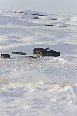 Winter Landscape Prairie in Saskatchewan Canada homestead Stock Photo