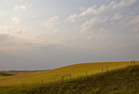 Summer Prairie Scene Canada Saskatchewan harvest time