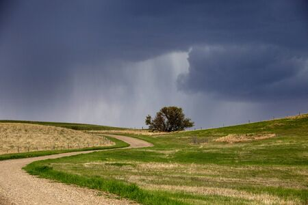 Prairie Storm Clouds in Saskatchewan Canada Rural Banco de Imagens - 124929963