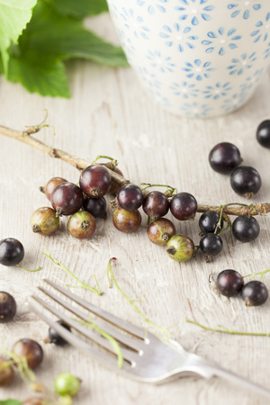 stripping: Stripping Blackcurrants from Stalks
