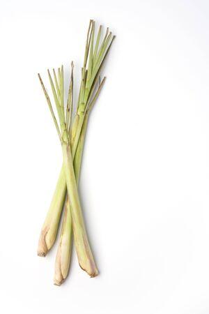lemon grass: Three Pieces Of Fresh Lemon Grass On White Background