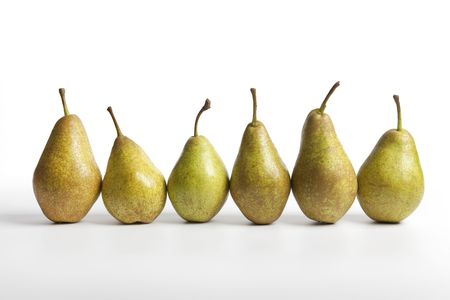 Row of six Pears Triomphe de Vienne Stock Photo - 5623588