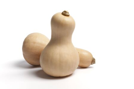 butternut: Two butternut pumpkins