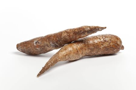 esculenta: Maniok, Manihot esculenta on white background  Stock Photo