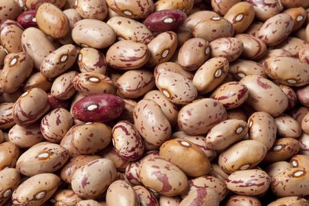 Pinto beans ,Phaseolus vulgaris full frame photo