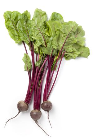Beetroots or beets with green leaves on white background Stock Photo - 7379082