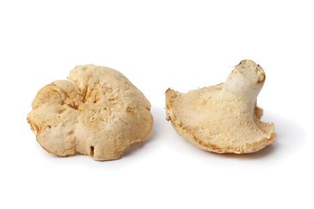 srokaty:  Grzyby mouton srokaty de samodzielnie na biaÅ'ym tle Zdjęcie Seryjne