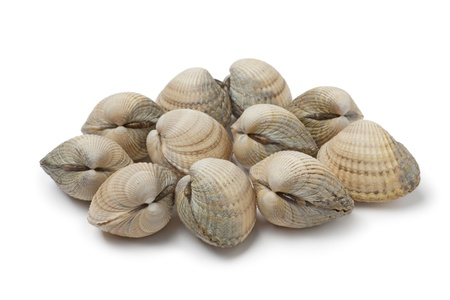 clam: Fresh raw cockles on white background Stock Photo