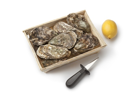 Fresh raw oysters in a box with an oyster-knife and lemon on white background photo