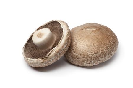 mushroom�: Fresh Portobello mushrooms  isolated on white background