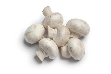hongo:  Su conjunto fresco, setas de bot�n, champignons, sobre fondo blanco