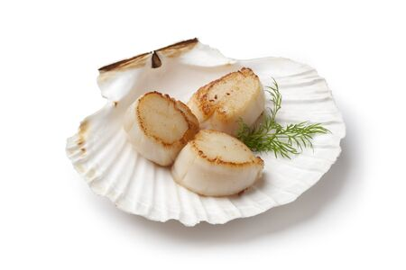 coquille: Seared scallops served in a shell with dill on white background