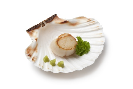 coquille: Seared scallop served in a shell with wasabi on white background Stock Photo