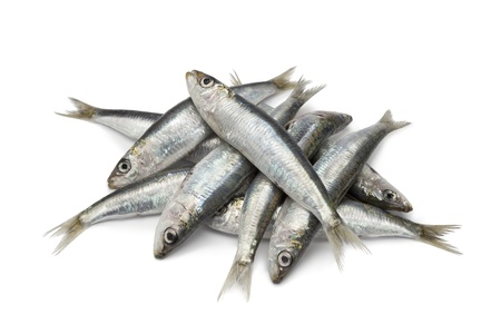 sardines:  Fresh raw sardines on white background Stock Photo