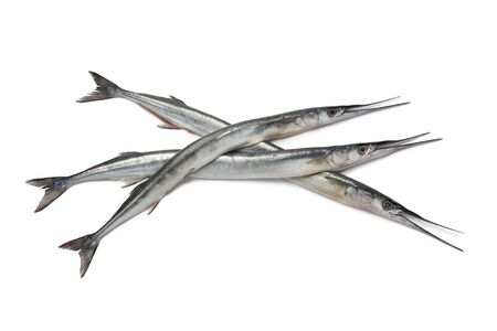 Fresh raw garfishes on white background Stock Photo - 9744653