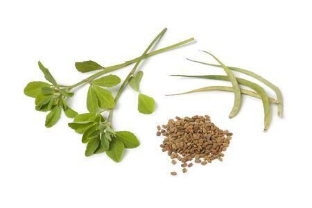 Liści kozieradki, strąki i nasiona na białym tle